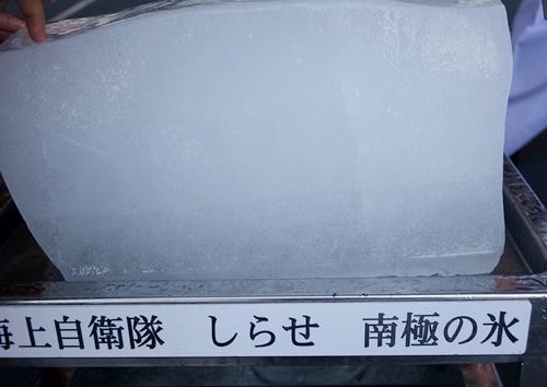 DSC09063.JPG